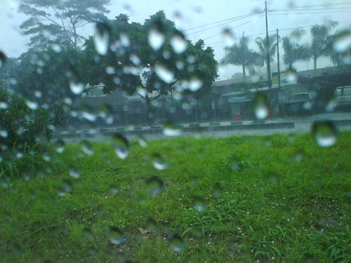 hujanes_dirumput.jpg